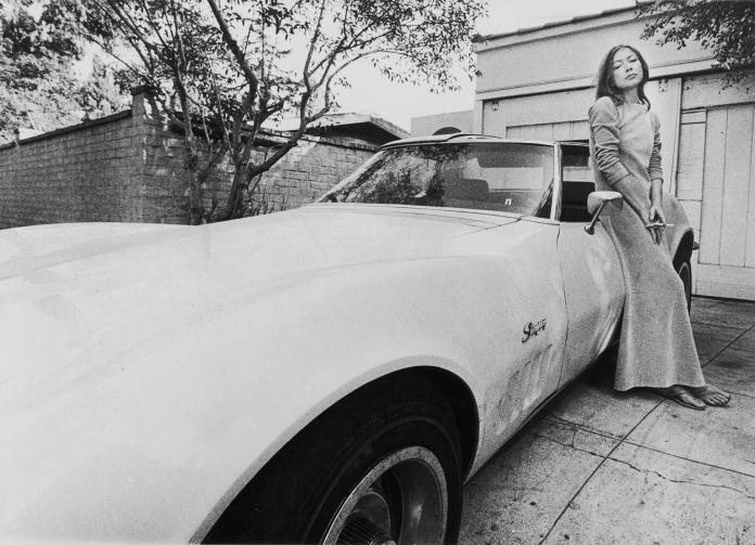 Didion And Corvette